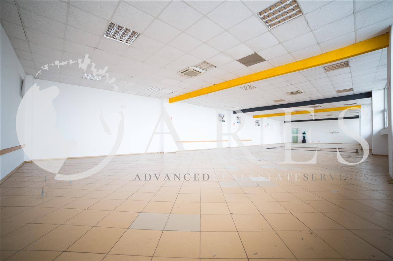Vanzare Spatiu Industrial Investitie/Utilizare Proprie Pallady